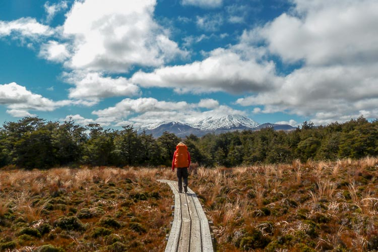 tongariro nationalpark wanderer steg